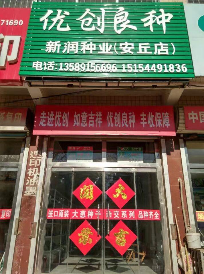 公司安丘店
